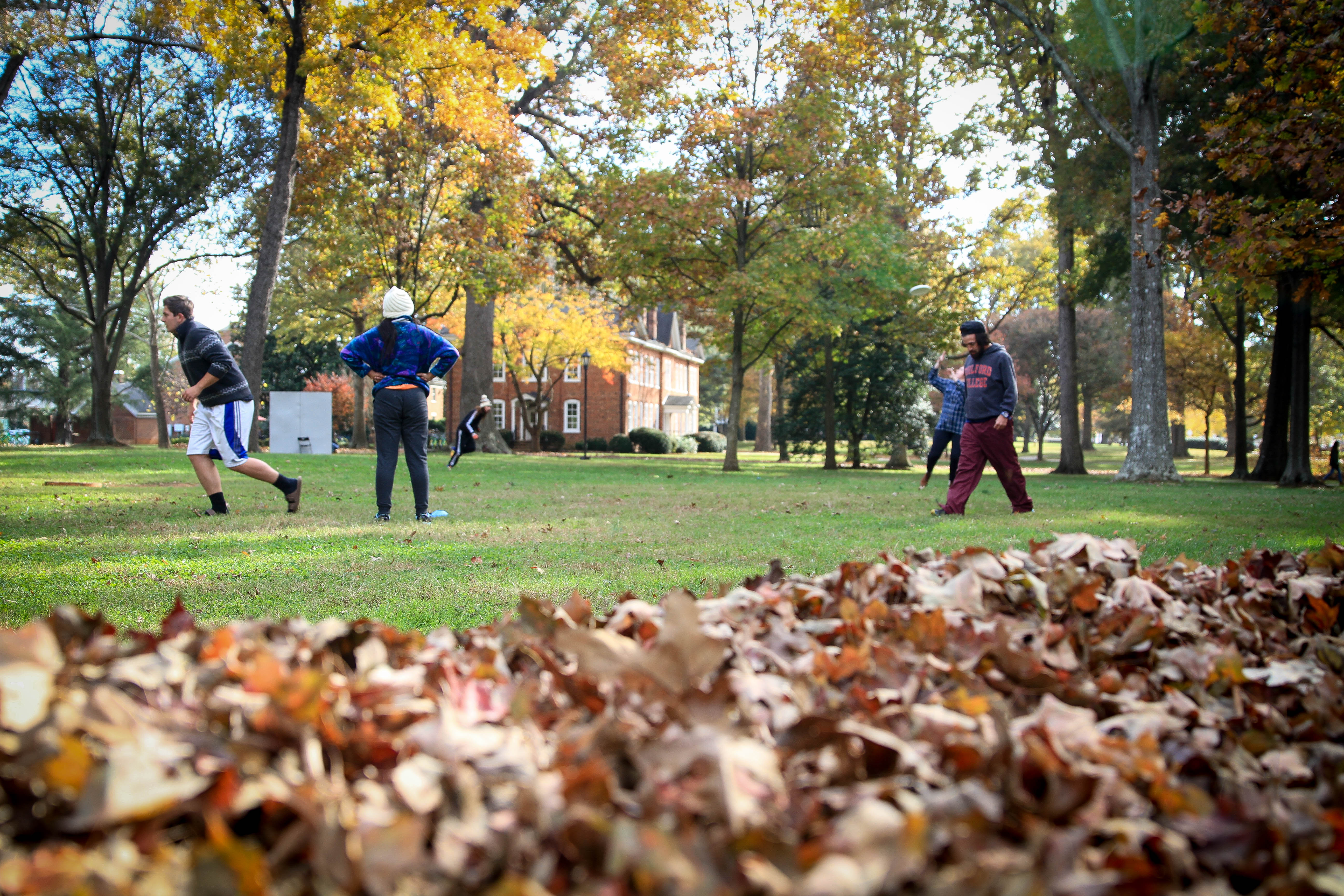 A leafy Quad was the perfect backdrop for all the Sports Spectacular fun.