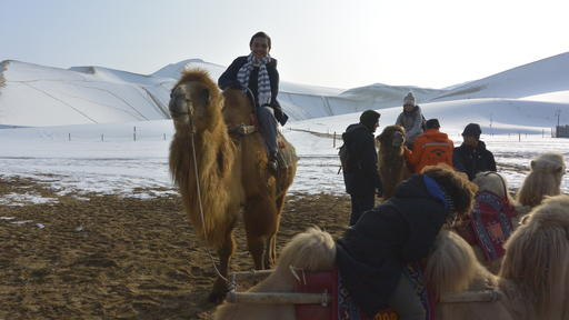 Guilford College student Brian James rides a camel in China through Study Abroad